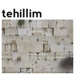 tehillim-02